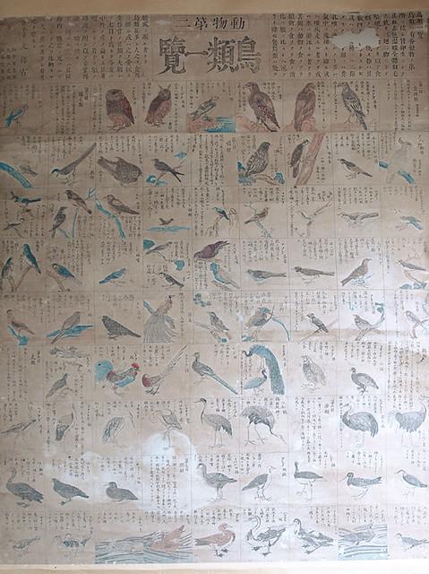 田中芳男+服部雪齋『動物第二 鳥類一覽』明治08年(初版)