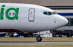 F-GZHT Transavia Boeing 737 (4)