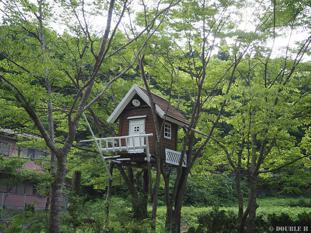 Terrace Cafe Tree House 2018-07-13 (1)