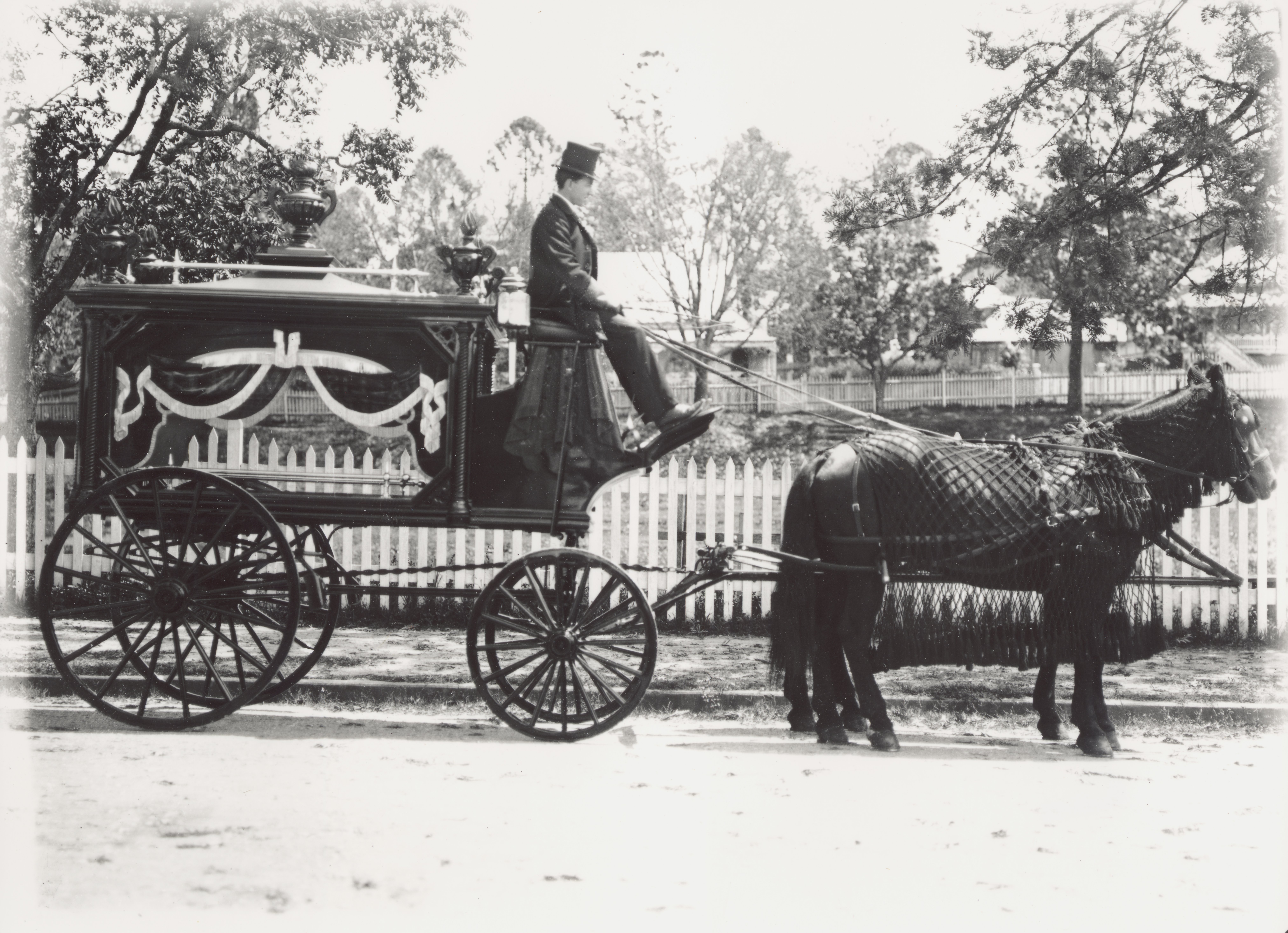 A E Roberts Carriage Works made beautifully finished vehicles such as this hearse. The hearse, the driver and the horses were immaculately turned out. Sadly, most people would ride in a salubrious vehicle only once, and it was a ride they would not remember.