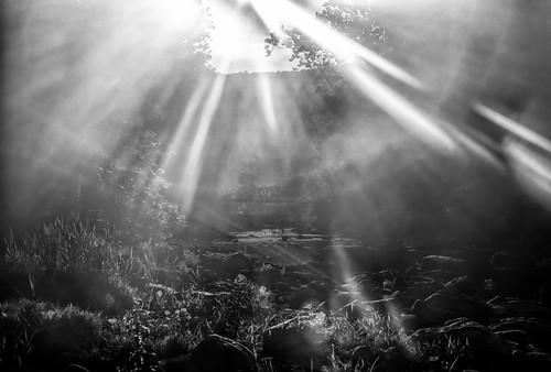 canon availablelight abstract blackwhite catskillnewyork canonllenses 5dsr 7020028lisii ef70200f28isiiusm eos ef llenses landscape light leeds sky sun outdoors trees