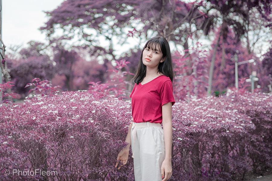 PhotoFleem-Wonder-basic04