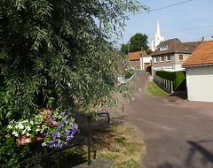 Nielles-lès-Bléquin Eglise Saint Martin  (2)