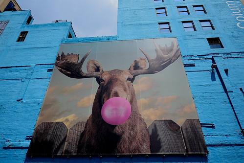 52 Weeks of 2018 Week No. 29  Theme: Grafitti - Street Art- Chicago