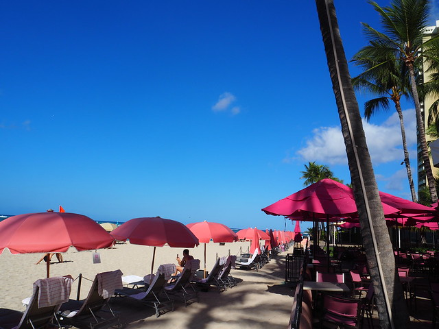 P7078705 hawaii ハワイ JAL 女子旅 2泊4日
