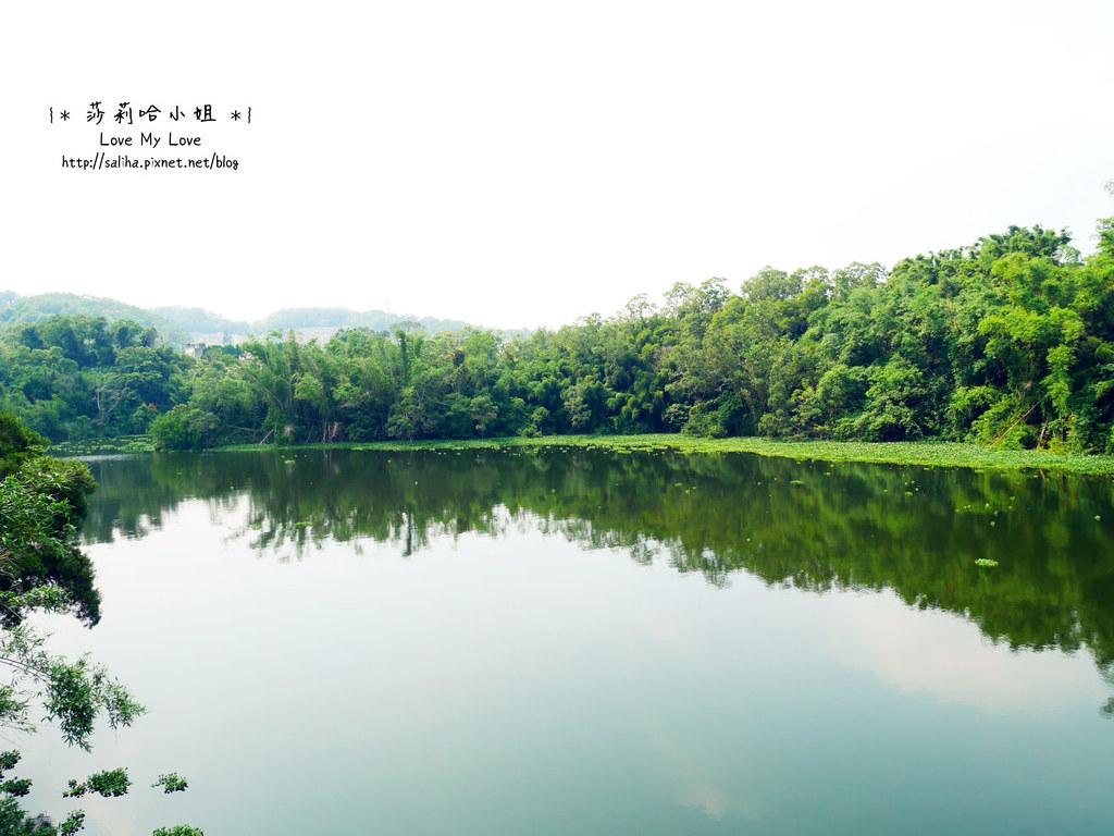 新竹一日遊景點峨嵋湖怎麼去停車交通 (3)