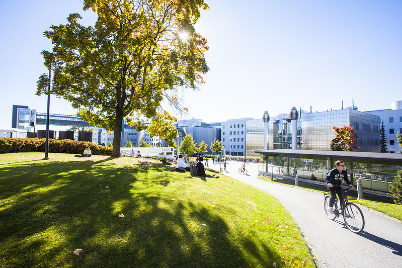 TAMPERE UNIVERSITY Image