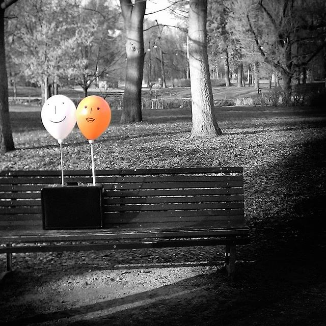 Happy baloons #baloons #happy #blackandwhite #bw #orange #park #garden #bench #music #video #instagood #photooftheday #picoftheday #igers #igersitalia #igersmilano #fun #love #face