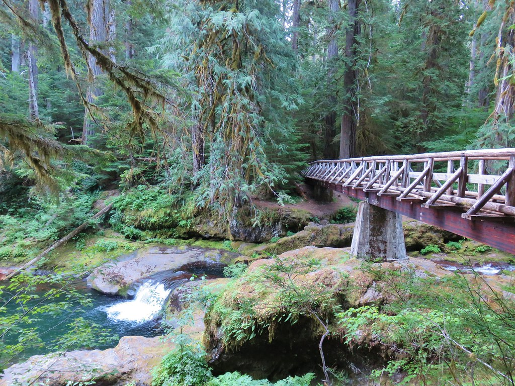 Footbridge over the Hot Springs Fork