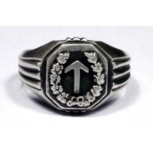 32nd-ss-volunteer-gren-division-january-30-ring