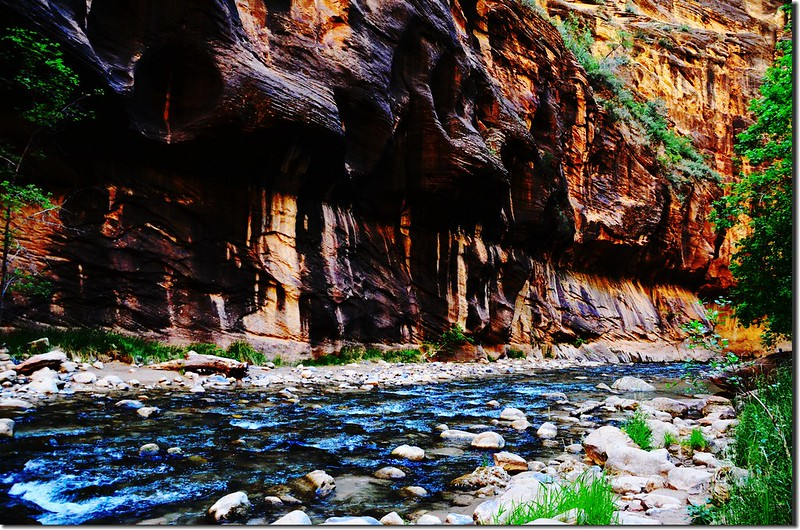 The Narrows, Zion National Park (21)