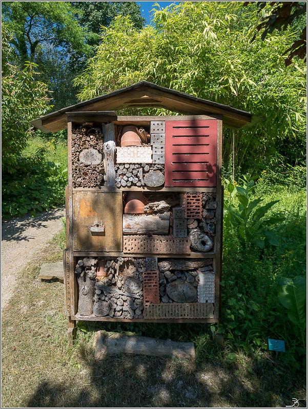 Jardin botanique Saverne: le jardin 29218418668_997a5bc8a9_c
