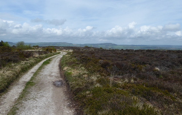 Heathland track on Hardown Hill small