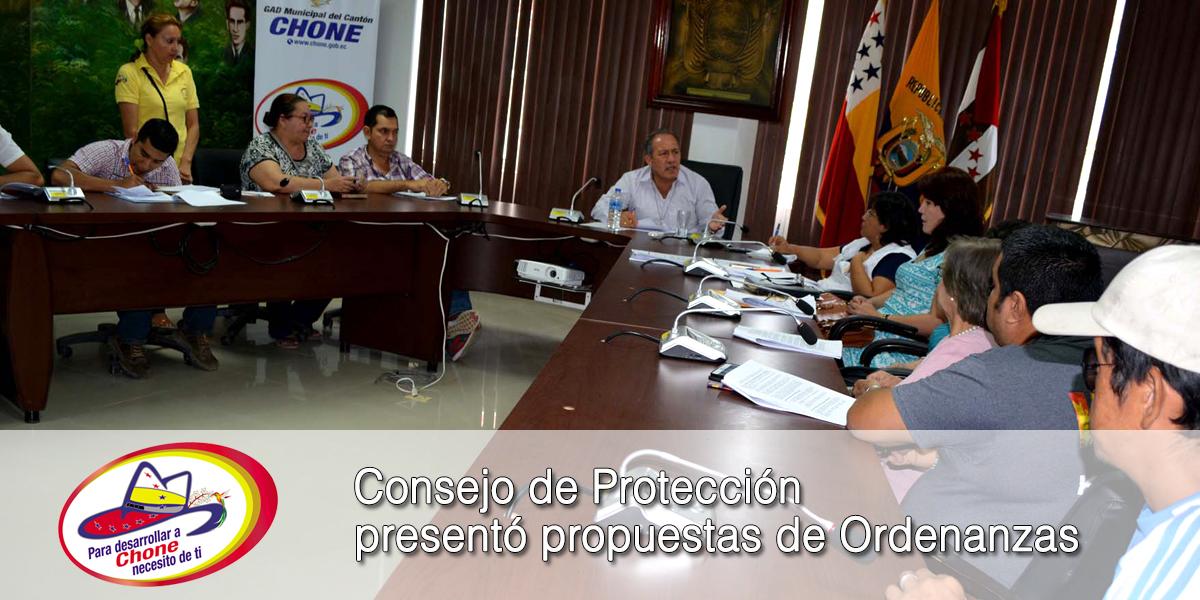Consejo de Protección presentó propuestas de Ordenanzas