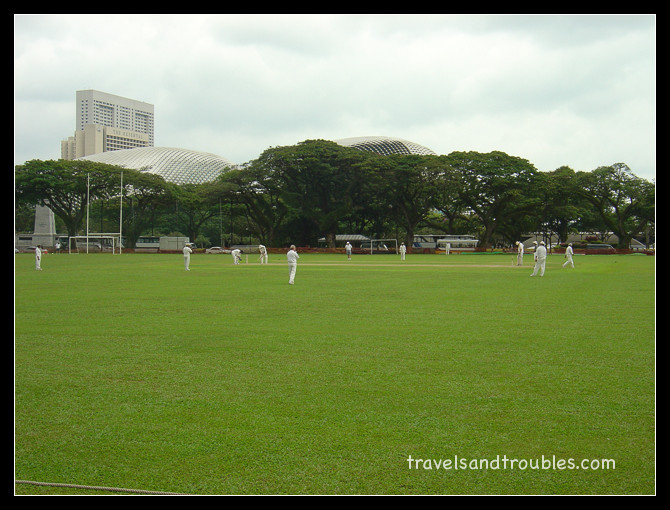 Cricket op zaterdagmiddag