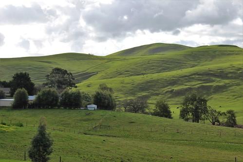 Rolling hills of Gippsland, Korumburra