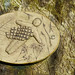 Barley, Aitken Wood - Pendle Sculpture Park (13)
