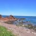 Dunbar harbour (6)