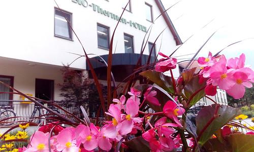 Blumen vor dem Wilfinger Bio Thermen Hotel