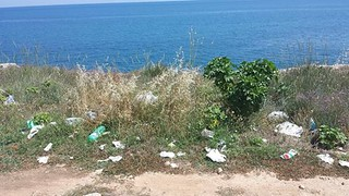 Cartacce lungo la costa