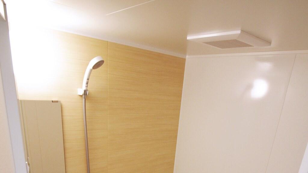 バスルームの天井部分とシャワーヘッド