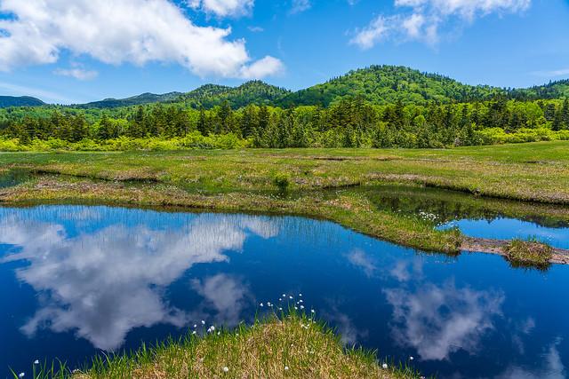 鏡の様な池塘に写る空とワタスゲ@小松原湿原