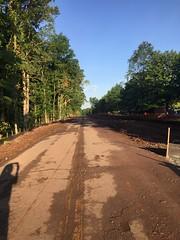Abandoned Polar Tree Road