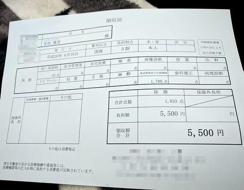 前歯の差し歯の治療にかかった費用5500円
