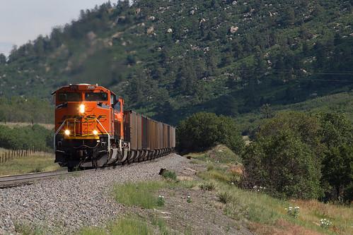 bnsf bnsf8595 emd sd70ace larkspur colorado jointline renaissancefestival train railroad