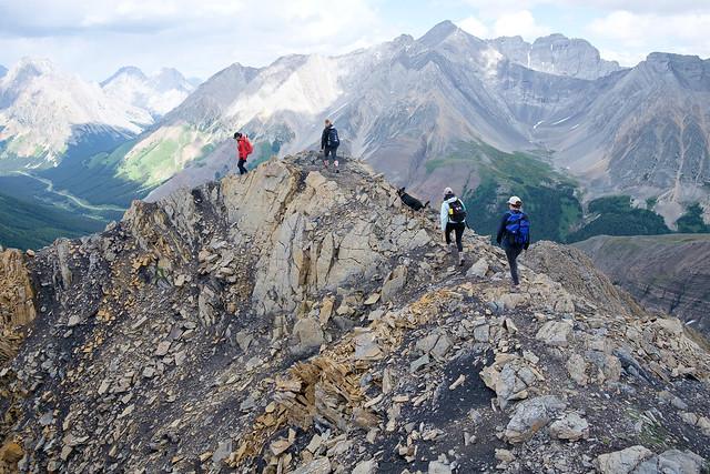 Scrambles - Grizzly Ridge-9