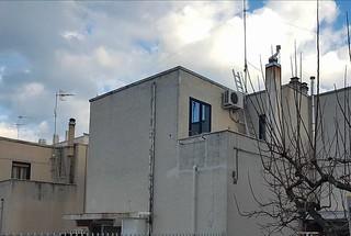 Casa popolare degrata, persi i finanziamenti regionali per i lavori