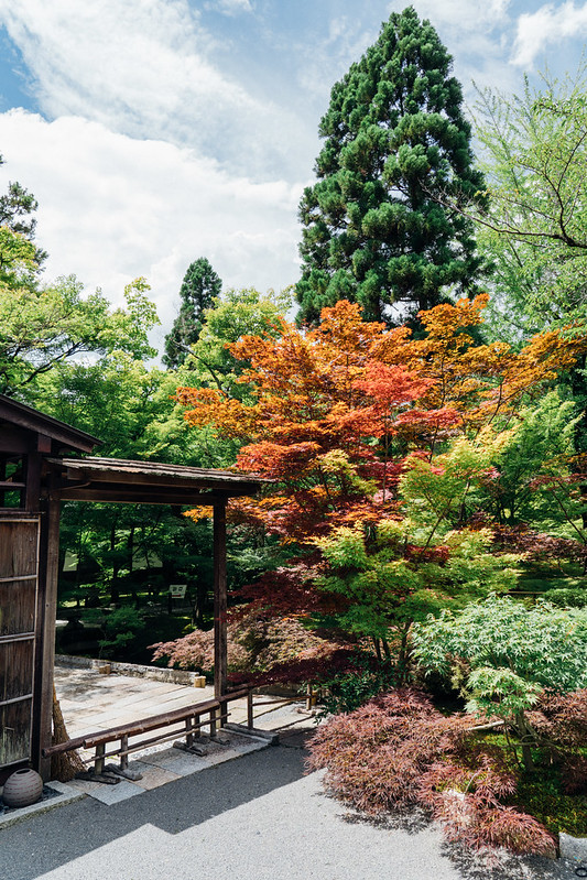Kyoto32_Nanzenji_09