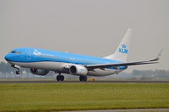 Meerkoet / Crested Coot KLM Royal Dutch Airlines PH-BXP Boeing 737-9K2