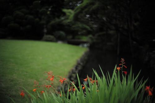 tamura-bunsui