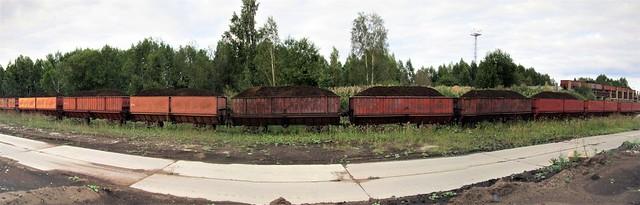 Turbarong / Peat train, Estonia