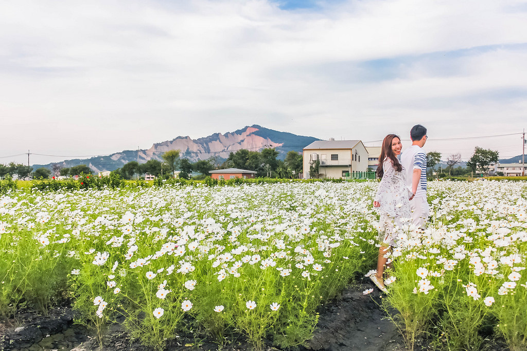 zhong-she-guan-guang-flower-market-view-alexisjetsets