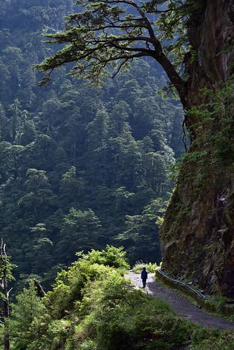 合歡溪步道