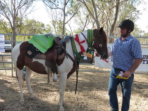 Moot Yang Gunya Stockman's Challenge - Winner Jack Duffield riding Riley