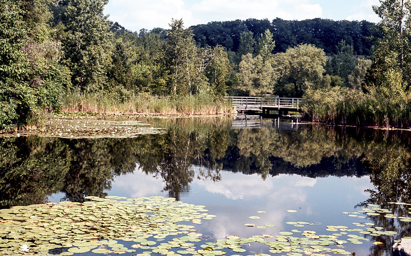 Reflected Brickworks Park_