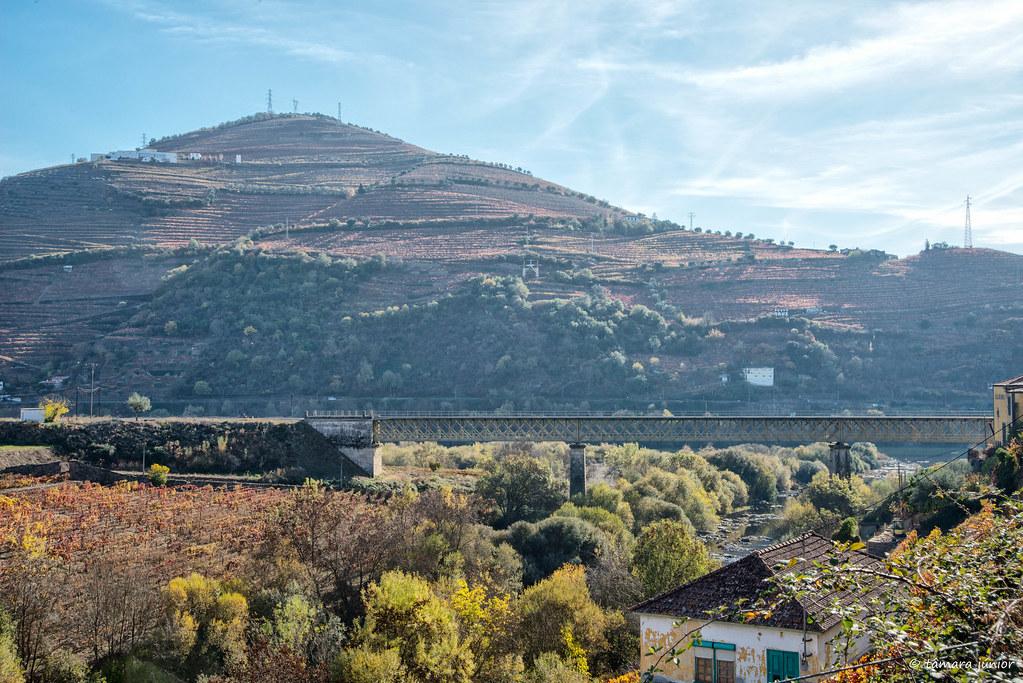2017.- Pelo Douro no outono (M313+N222) (63)
