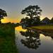 Canal sunrise Astbury by jvarley19