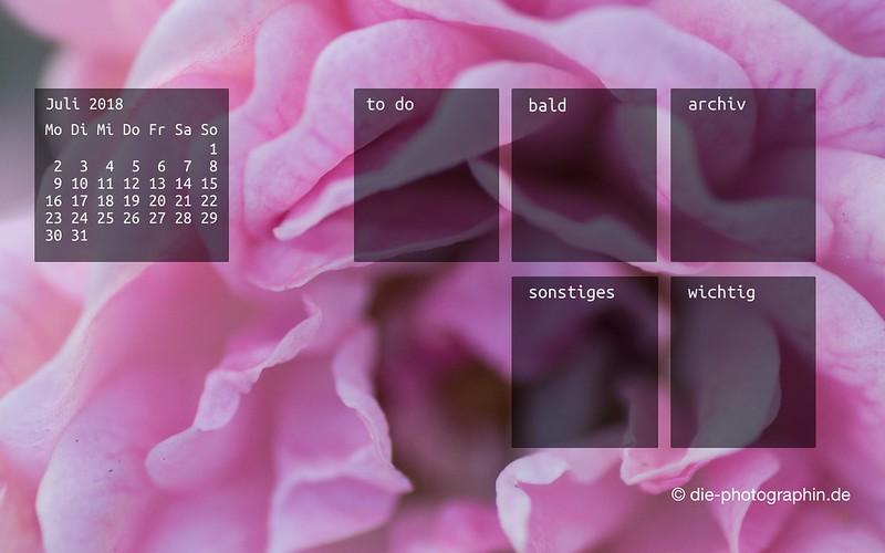 072018-rose-makro-organizedDesktop-wallpaperliebe-diephotographin