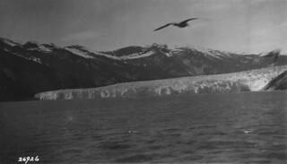 View from the Taku Glacier cruise, Alaska / Vue, croisière du glacier Taku (Alaska)