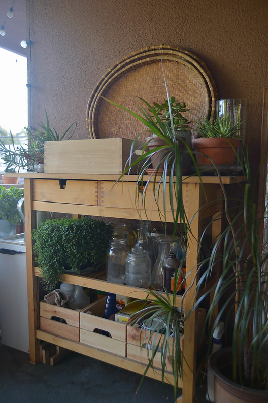 organized potting table
