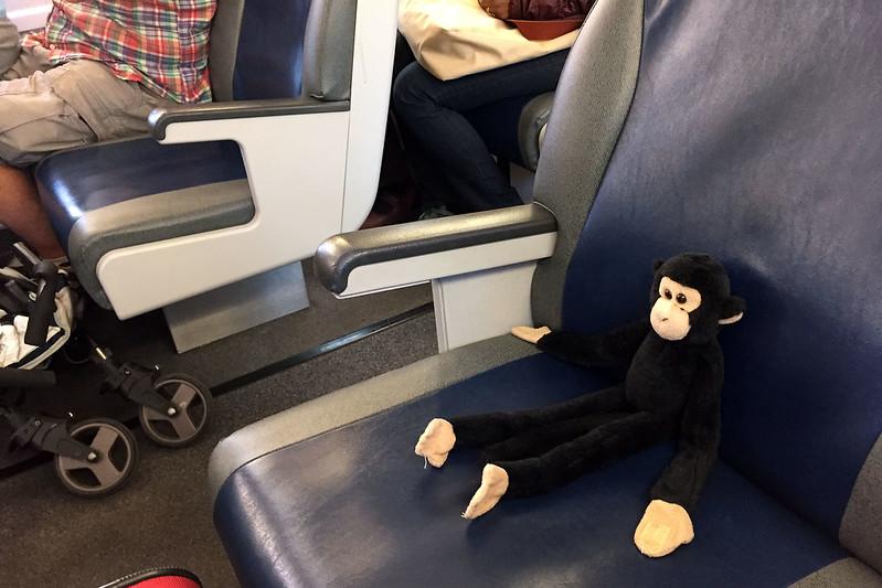 Monkey riding Caltrain