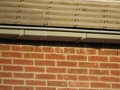 Poepstrepen onder de dakgoot aan de achterzijde van woningen aan de Pink Floydstraat