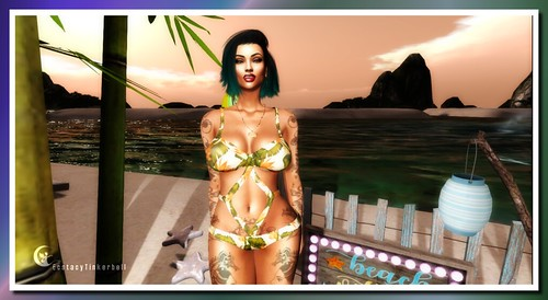 Beach Vibes Obly [S.1.1]