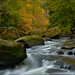 Tinker's Creek Gorge by Jim Buescher Photography