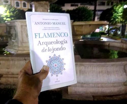 Libro de flamenco de Antonio Manuel Rodríguez