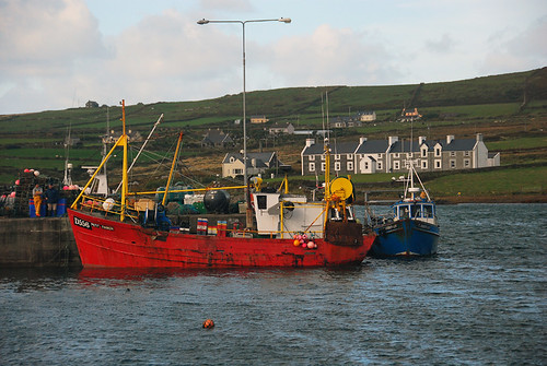 Boats at Port Magee in Ireland